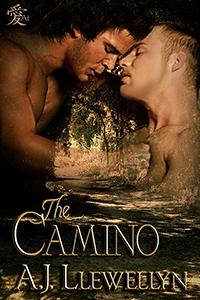 The Caminolarge23